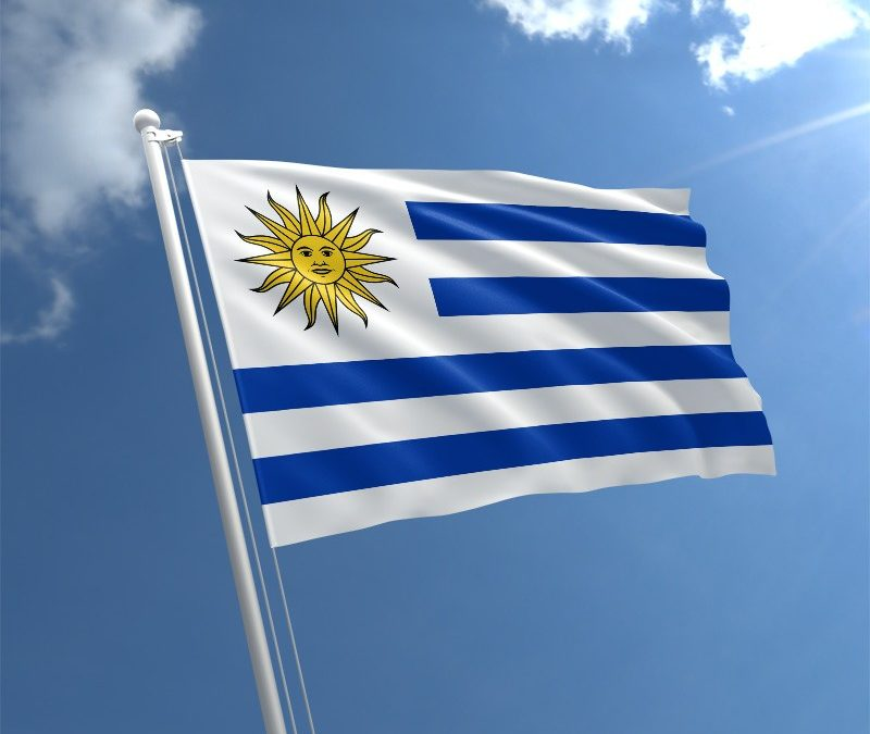 Things You Should Know Before Registering Your Medical Devices In Uruguay