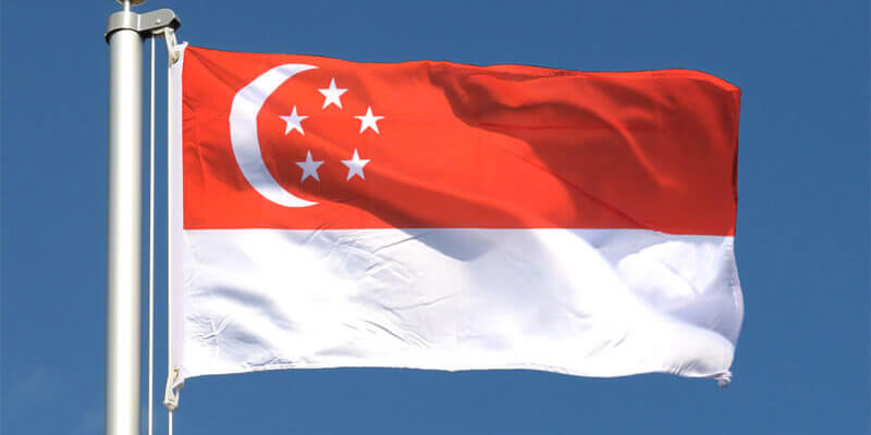 HSA Announces Singapore's UDI System