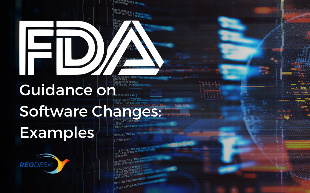 FDA Guidance on Software Changes: Examples